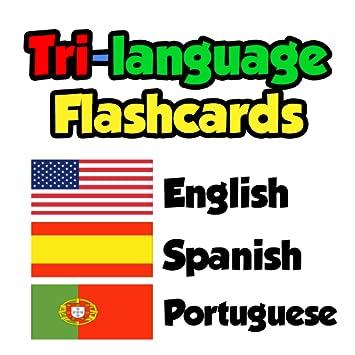 Amazon com: Flashcards - English, Spanish, Portuguese