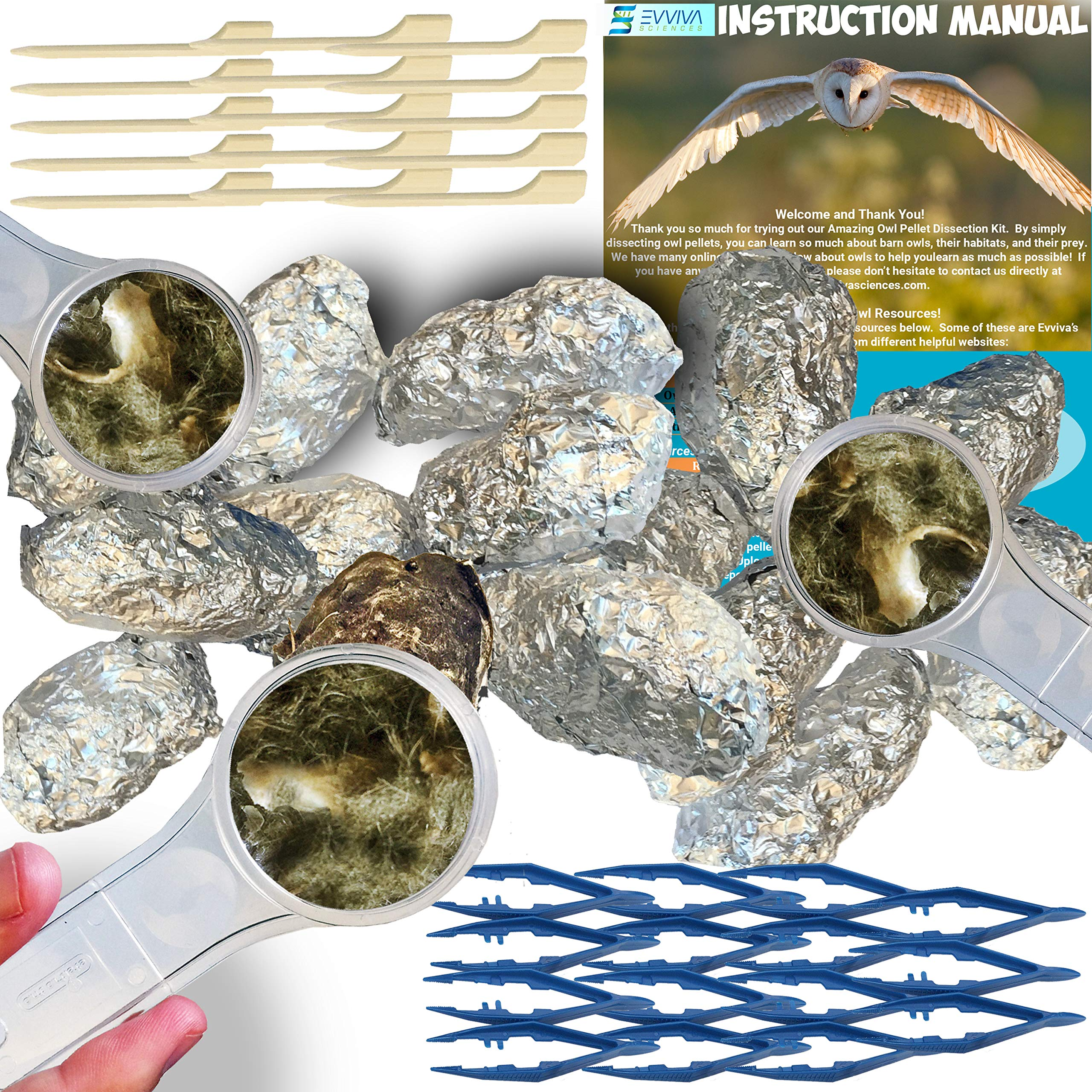 Amazing Owl Pellet Dissection Kit - 15-Piece Owl Pellet Set for Science Lab Projects - w/Tweezers, Magnifying Glasses and Wooden Probes - Ideal for Kids, Class Projects - Bonus Barn Owl eBook ...