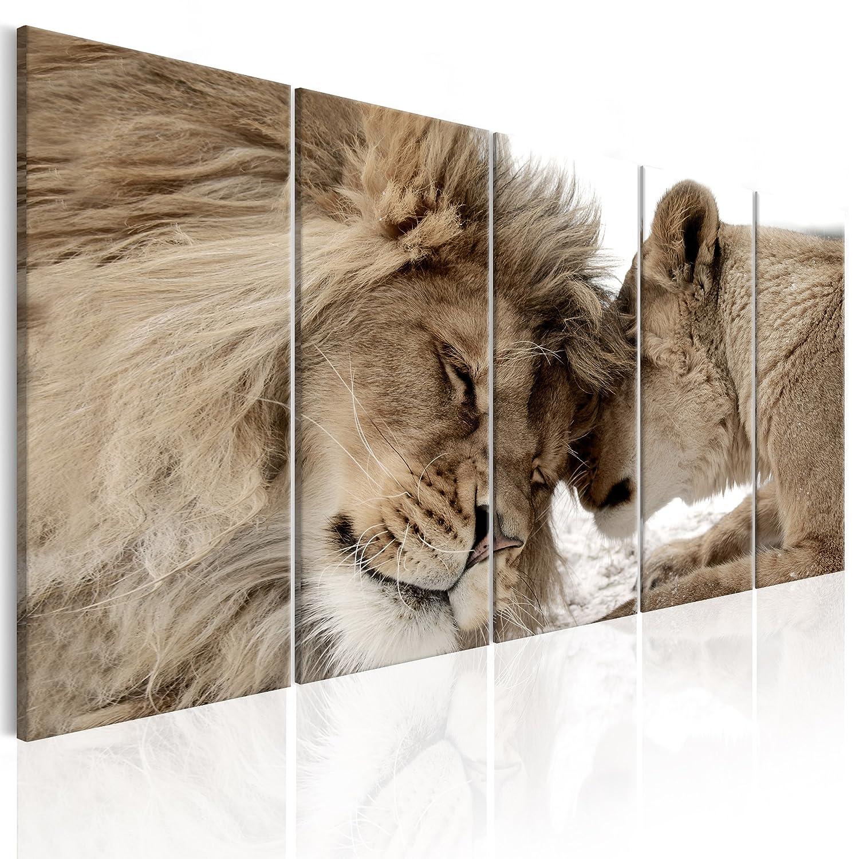decomonkey Akustikbild Löwe 200x80 cm 5 Teilig Bilder XXL Leinwandbilder Wandbilder XXL Schallschlucker Schallschutz Akustikdämmung Wandbild Deko leise Tiere Afrika Katze braun beige