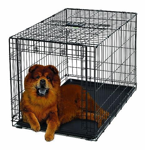 Amazon.com: Jaula de perro MidWest Homes for Pets, Puerta ...