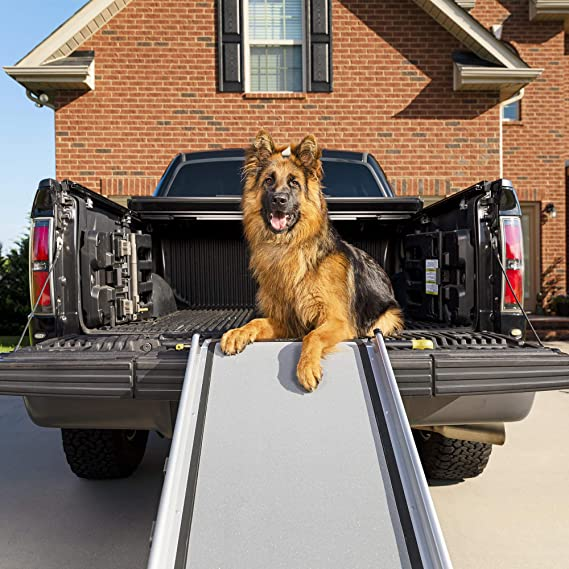 Petsafe Happy Ride Extra Long Telescoping Dog Ramp Portable Pet Ramp Great For Cars Trucks And Suvs Durable Aluminum Frame Supports Up To 300 Lb Side