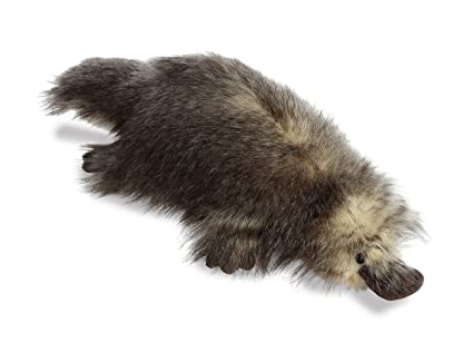 Buy Sage Platypus 16 inch (Luxe Boutique) - Stuffed Animal