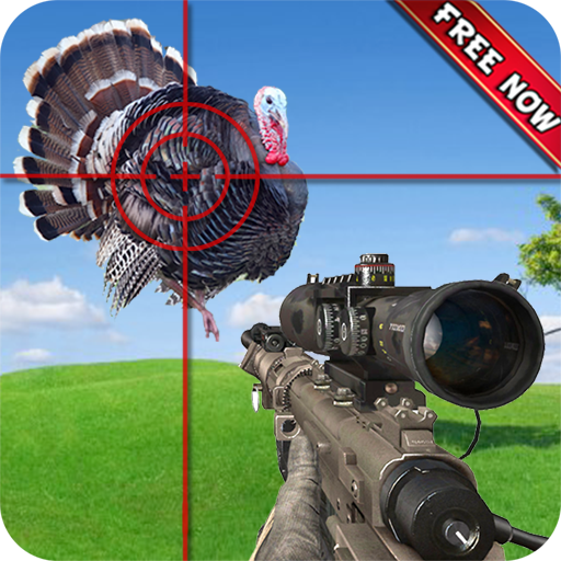 Turkey Hunt
