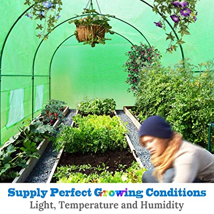Hoop Houses Create Perfect Growing Conditions