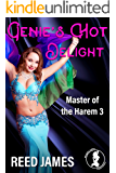Genie's Hot Delight (Master of the Harem 3)