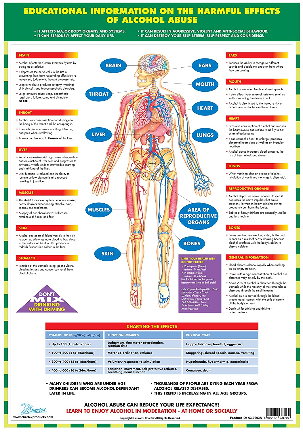 A2P-0603A Chartex Effects of Alcohol Chart Paper Format Size A2 Personal Health Series