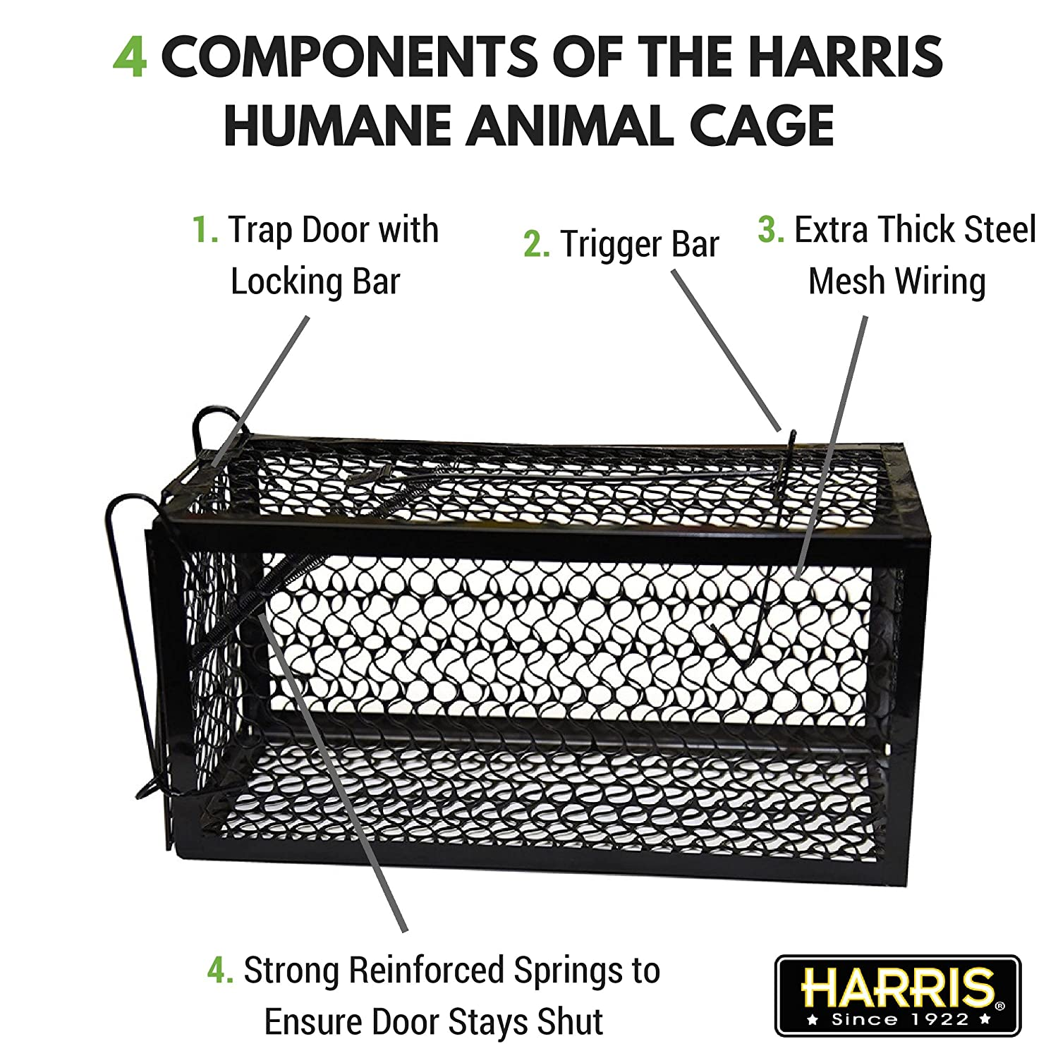 Amazon.com : Harris Catch & Release Humane Cage Trap for Rats ...