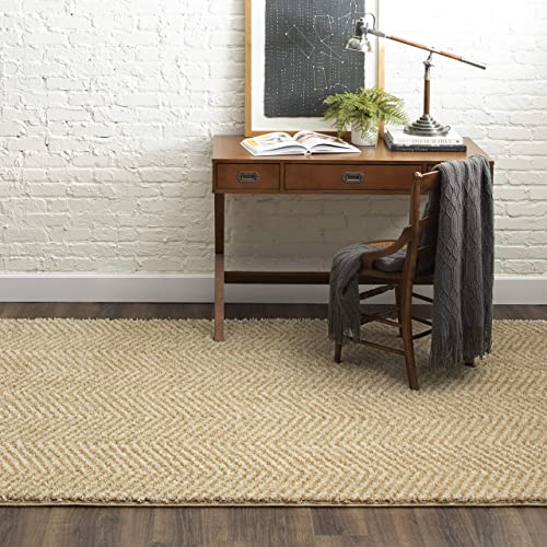 Mohawk Home Clinton Area Rug