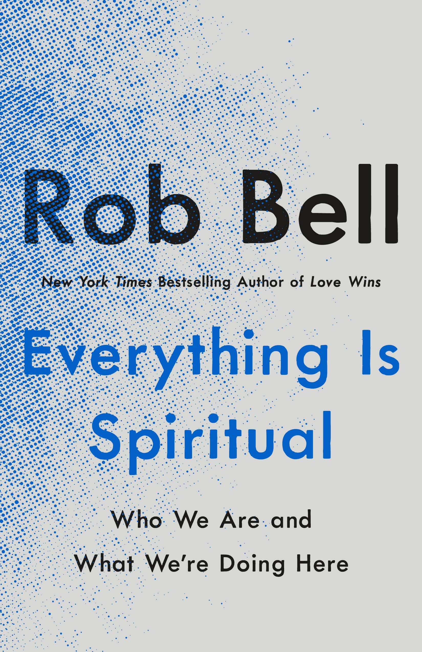 Everything Is Spiritual: Who We Are and What We're Doing Here:  Amazon.co.uk: 9781250620569: Books