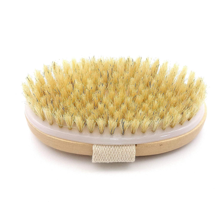 Stimulates Blood Circulation Ryan Smith Natural Bristle Skin Body Brush Remove Dead Skin And Toxins Exfoliates