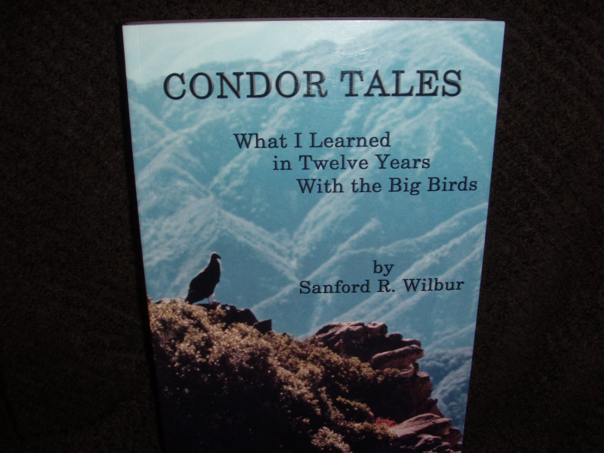 Read Online Condor Tales: What I Learned in Twelve Years with the Big Birds ebook