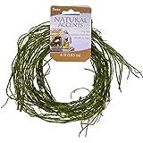 "Darice 14444B Floral Garland Twig Vine Flocked Moss, 72"", Green"