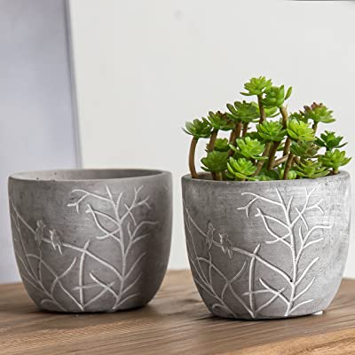 MyGift 4-Inch Bird & Branches Etched Clay Flower Pot, Small Succulent Planter, Set of 2: Garden & Outdoor
