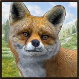 Wild Fox Simulator