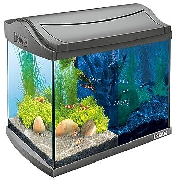 Tetra AquaArt Discovery Line - Set completo de acuario con luz LED, 20 litros,