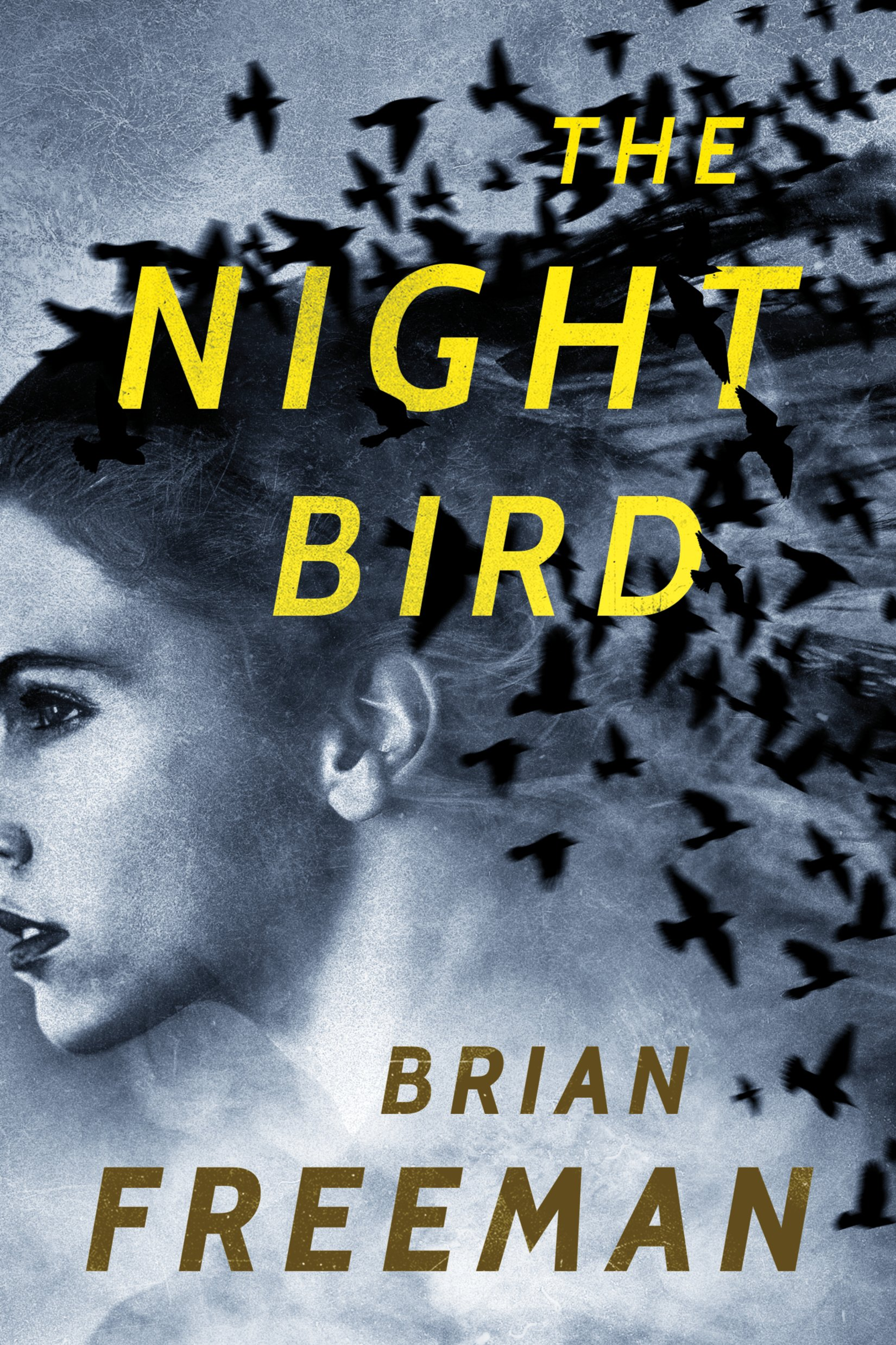 Download The Night Bird (Frost Easton) PDF