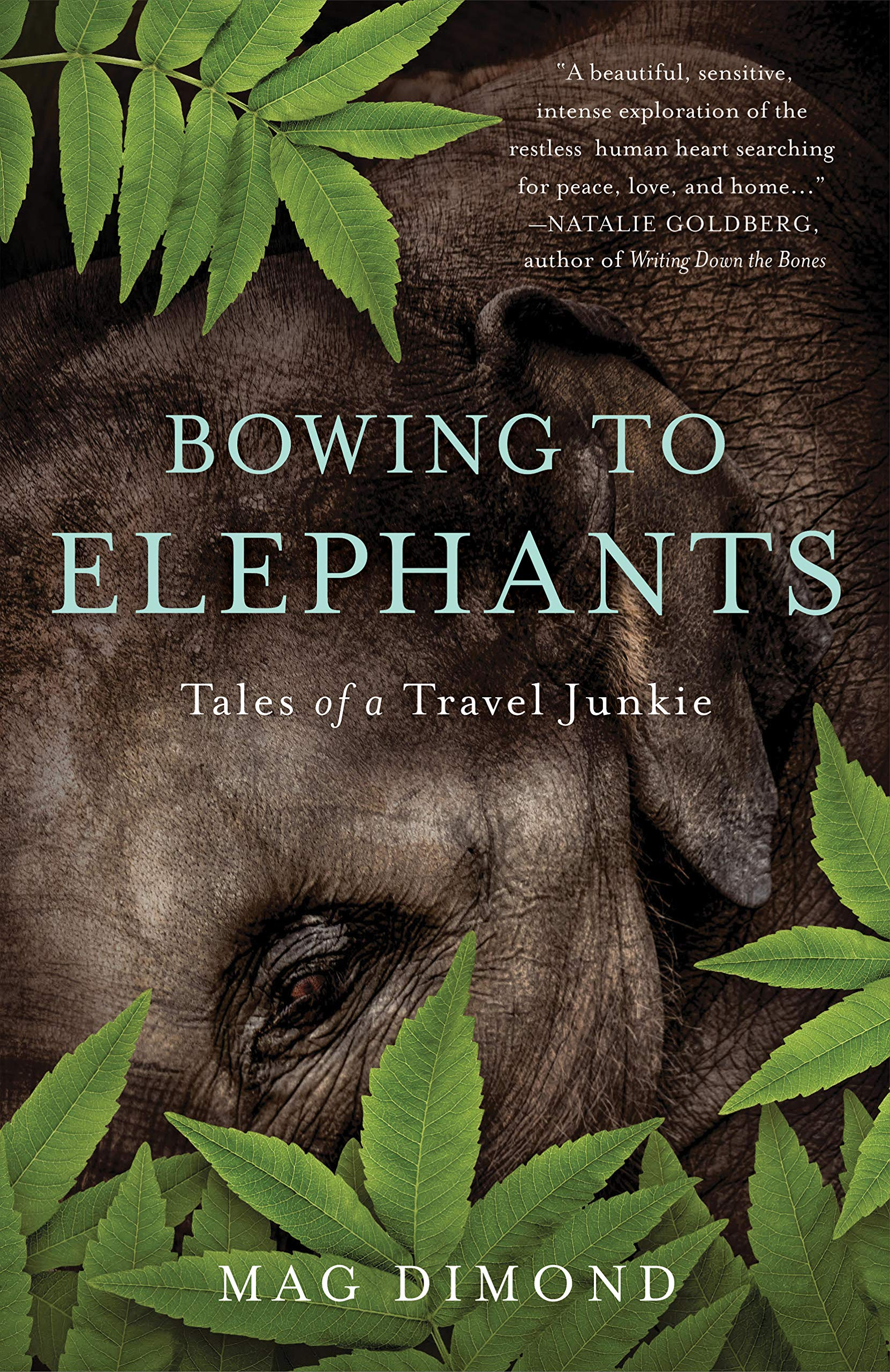 Image result for bowing to elephants book