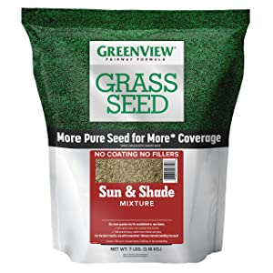 GreenView 2829337 Fairway Formula Grass Seed