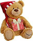 Amazon.com Gift Card with GUND Holiday 2017 Teddy Bear - Limited Edition [Prime Member Exclusive]