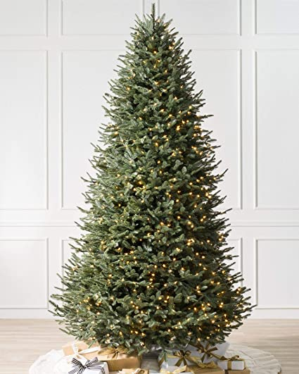 balsam hill bh balsam fir premium prelit artificial christmas tree 55 feet clear lights - Amazon Artificial Christmas Trees