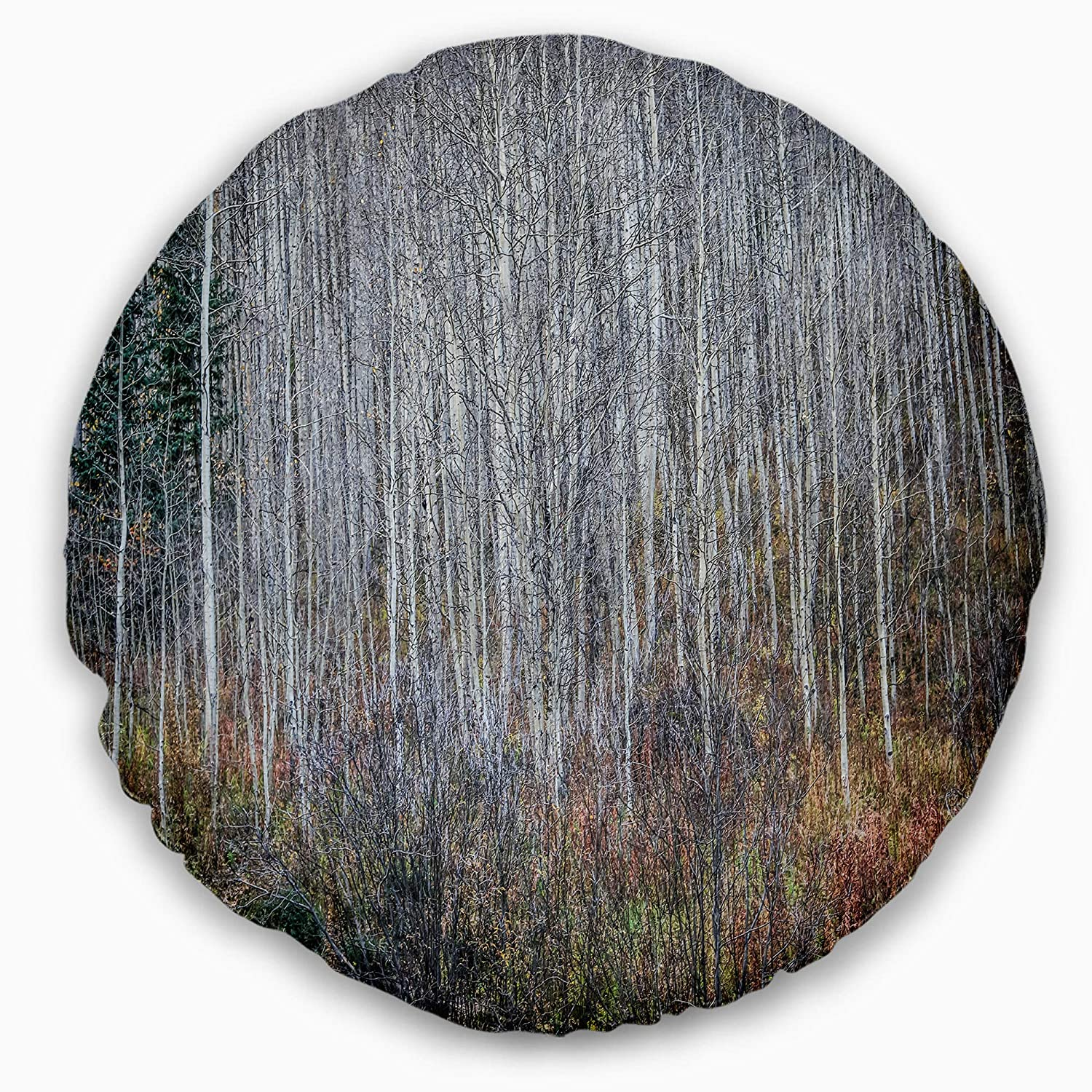 Designart CU13979-20-20-C Maroon Bells Mountain View Modern Forest Round Cushion Cover for Living Room 20 Sofa Throw Pillow
