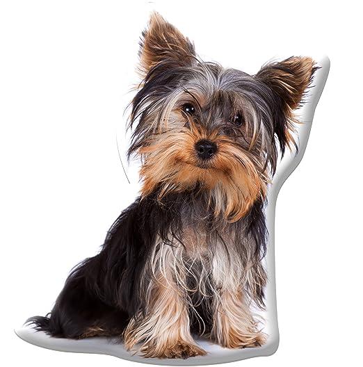 Funda de cojín en forma de perro Yorkshire de hogar Appleby ...