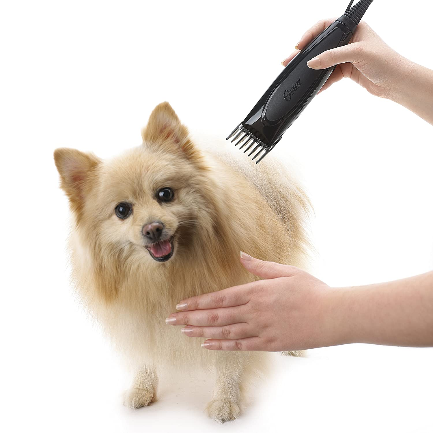 Pet Grooming Clippers : Amazon.com: Oster In-Home Grooming Kit with Super Duty Advance Clipper and Bonus Step-by-Step DVD