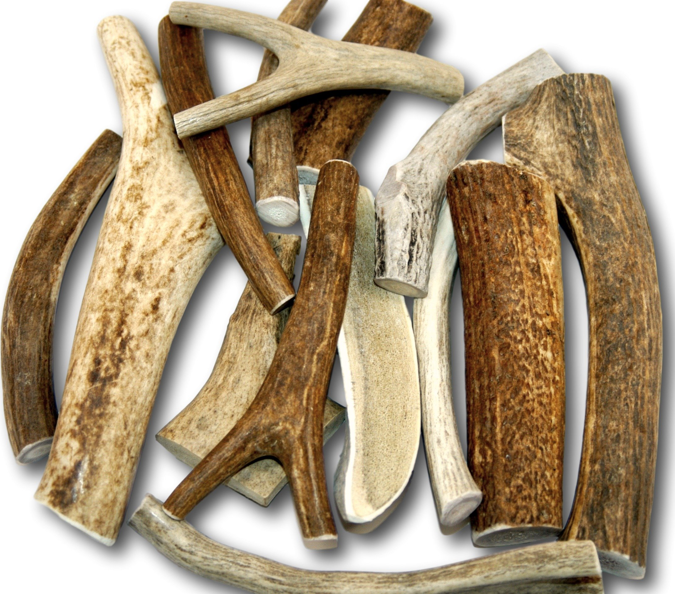 Premium Large Antler (+/- An Ounce Or Two) Variety Pack! No Pieces Under 6''! Top Dog Chews Brand! (One Pound) by Top Dog Chews (Image #1)