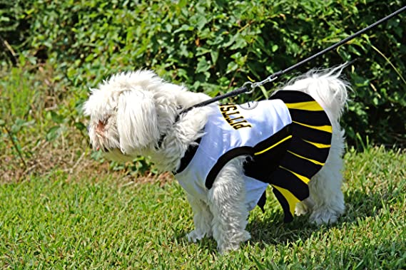 Amazon.com   Pittsburgh Steelers NFL Cheerleader Dress For Dogs - Size  Medium   Pet Supplies d80f7767f