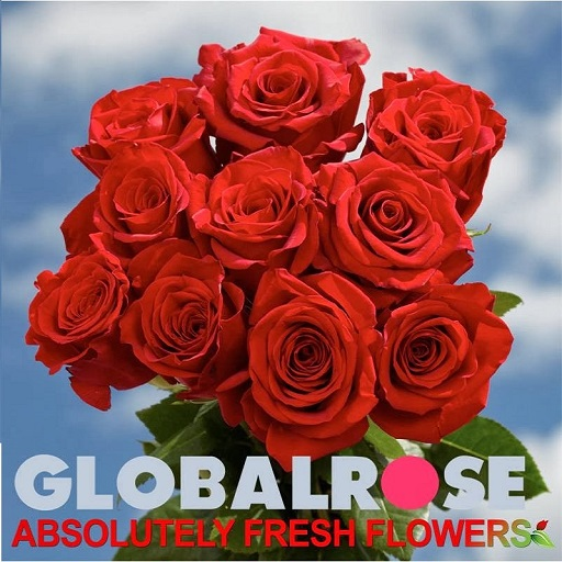 globalrose-flowers-delivery