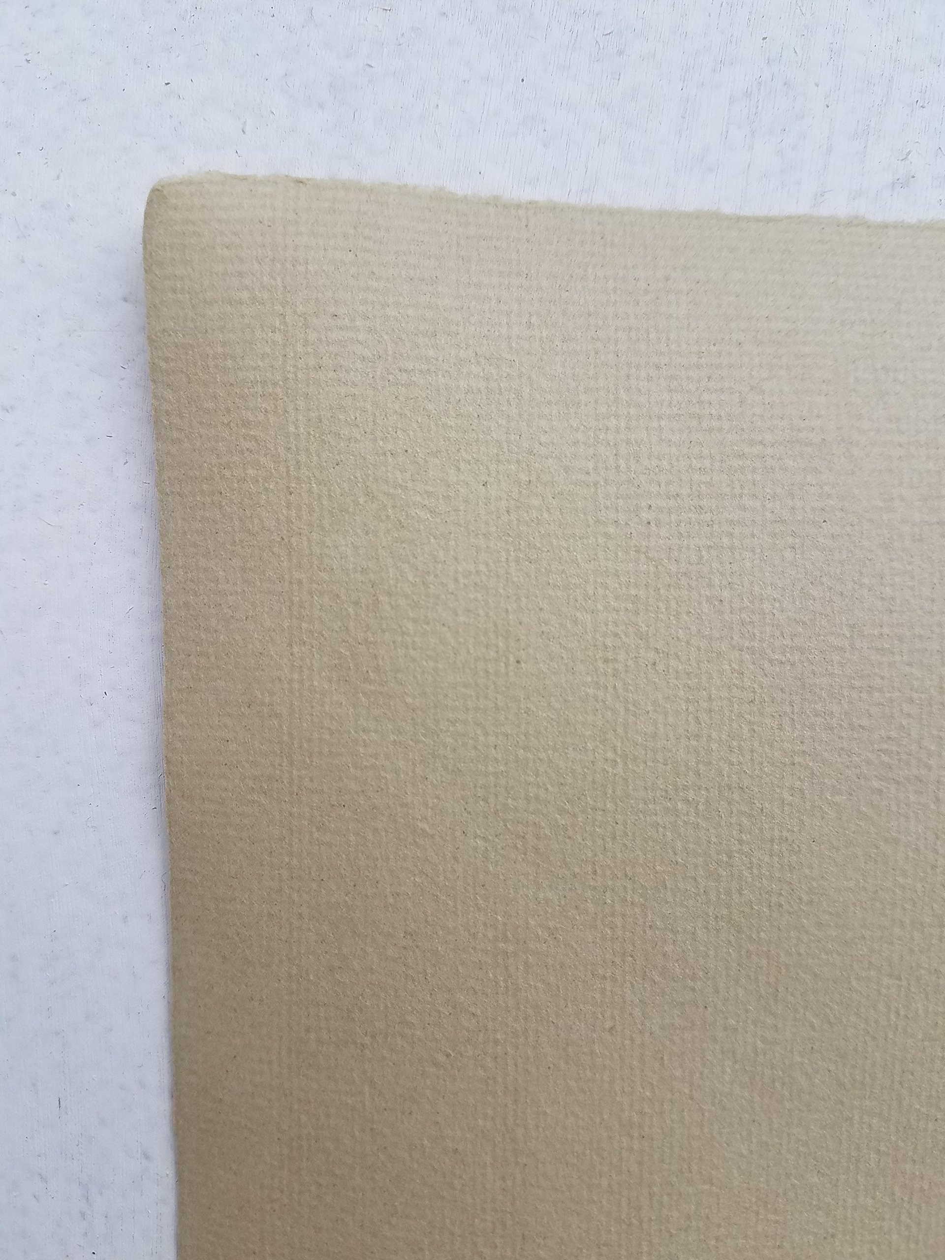 Hahnemuhle Ingres Paper, Earth Sand 118, 19'' X 25'', 100 gsm (25 Sheet Package) by Hahnemuhle Ingres Antique