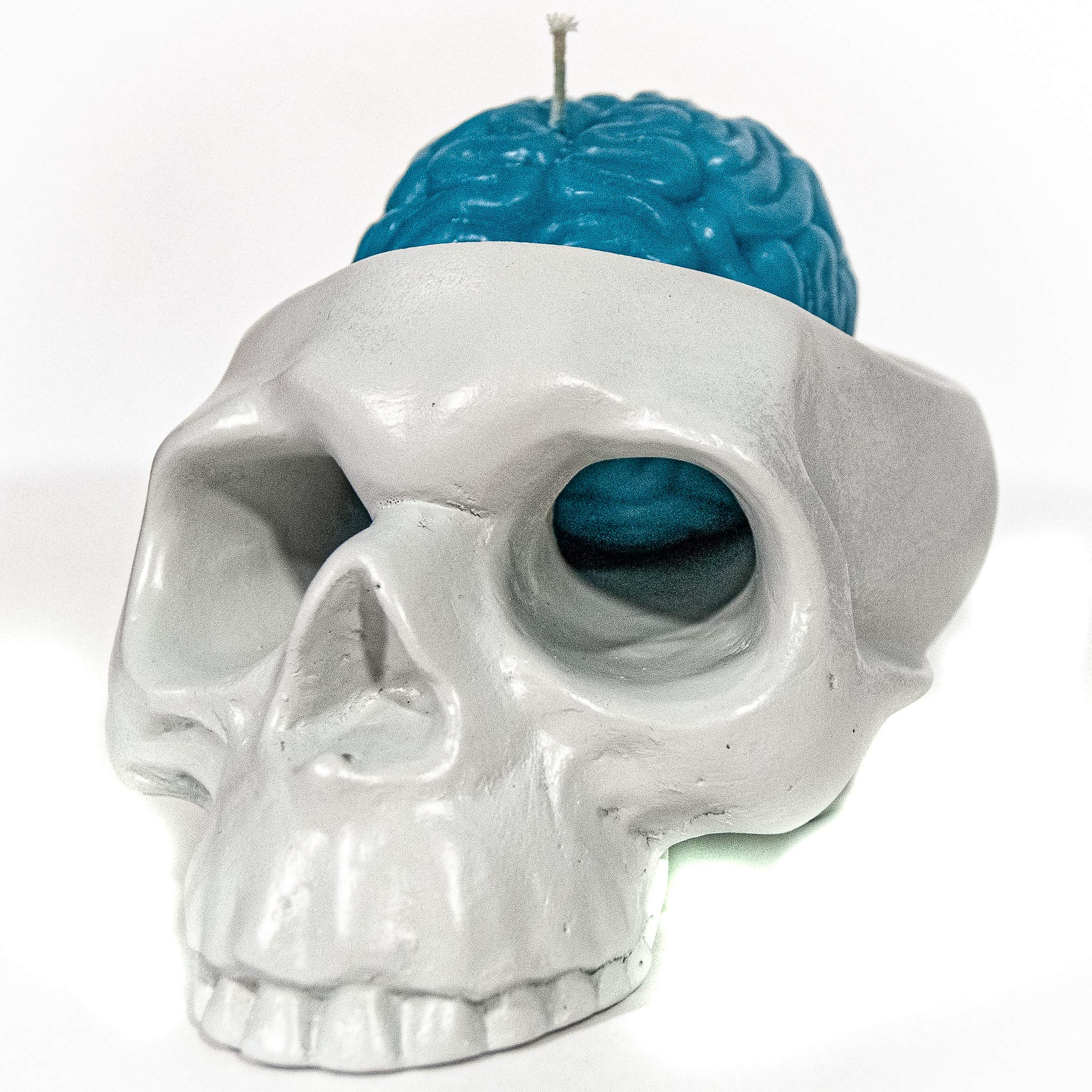 My Geek Things Scandle Skull Candleholder with a Brain Candle (Pearl Grey/Aqua Blue)
