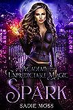 Spark (Academy of Unpredictable Magic Book 1) (English Edition)