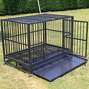 Sliverylake Dog Kennel – Double Door Pet Cage