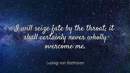 Amazoncom Home Comforts Ludwig Van Beethoven Famous Quotes