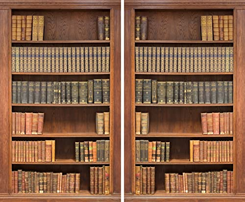 Factory4me Brown Curtains Bookshelf Library Themed Bookcase