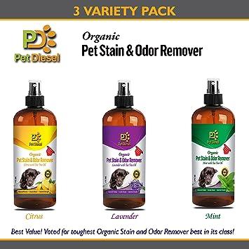 Pet mancha y olor Remover Spray para eliminación de olores ...