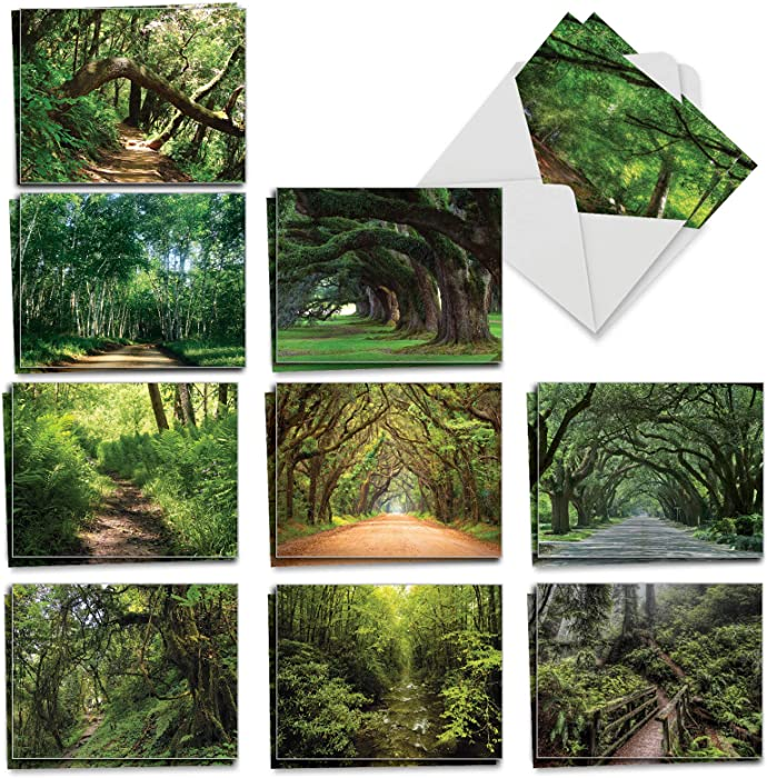 The Best Card Company - 20 Landscape Nature Note Cards Blank (4 x 5.12 Inch) (10 Designs, 2 Each) - Nature Trails AM6467OCB-B2x10