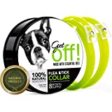 GetOff Natural Flea Collar for Dogs (8 Months) Flea and Tick Prevention - with Essential Oil Plant Extracts - Hypoallergenic One Size Fits All Dog