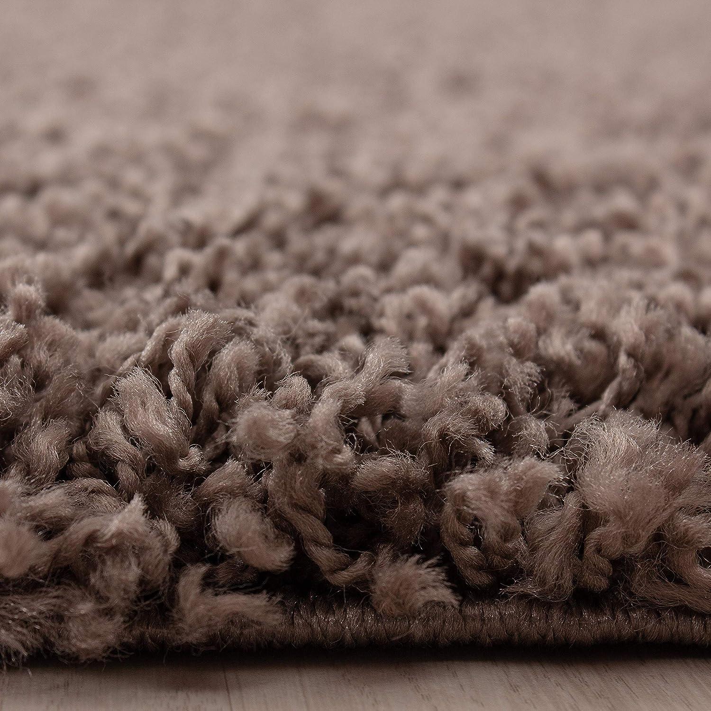 Hochflor Shaggy Shaggy Shaggy Teppich für Wohnzimmer Langflor Pflegeleicht Schadsstof geprüft 3 cm Florhöhe Oeko Tex Standarts Teppich, Maße 160x230 cm, Farbe Creme B01HQ7BUZI Teppiche 877541