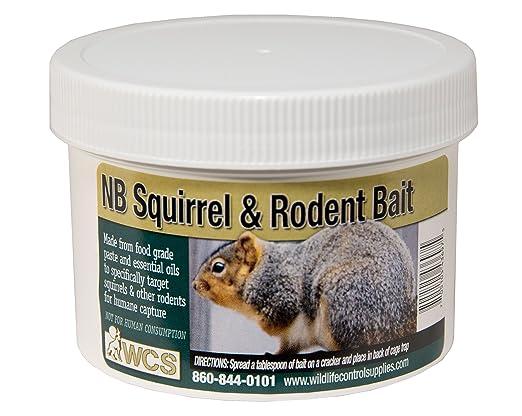 1a01ee773e Amazon.com   WCS NB Squirrel   Rodent Paste Bait   Garden   Outdoor