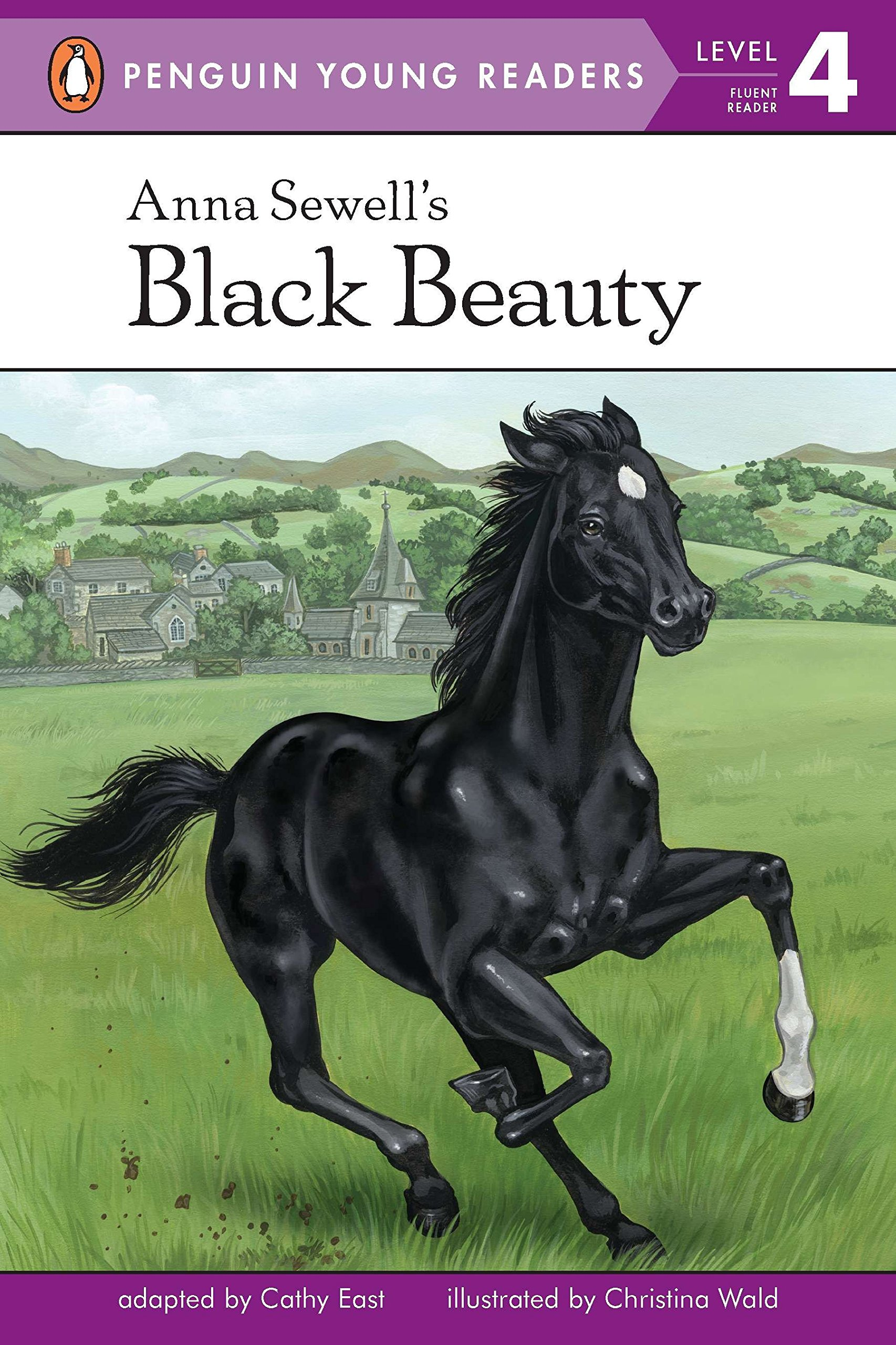 what is the book black beauty about