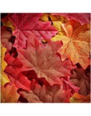 Whaline 300 Pieces Artificial Autumn Maple Leaves Mixed Fall Colored Leaf for Weddings, Events, Art Scrapbooking and Decorations