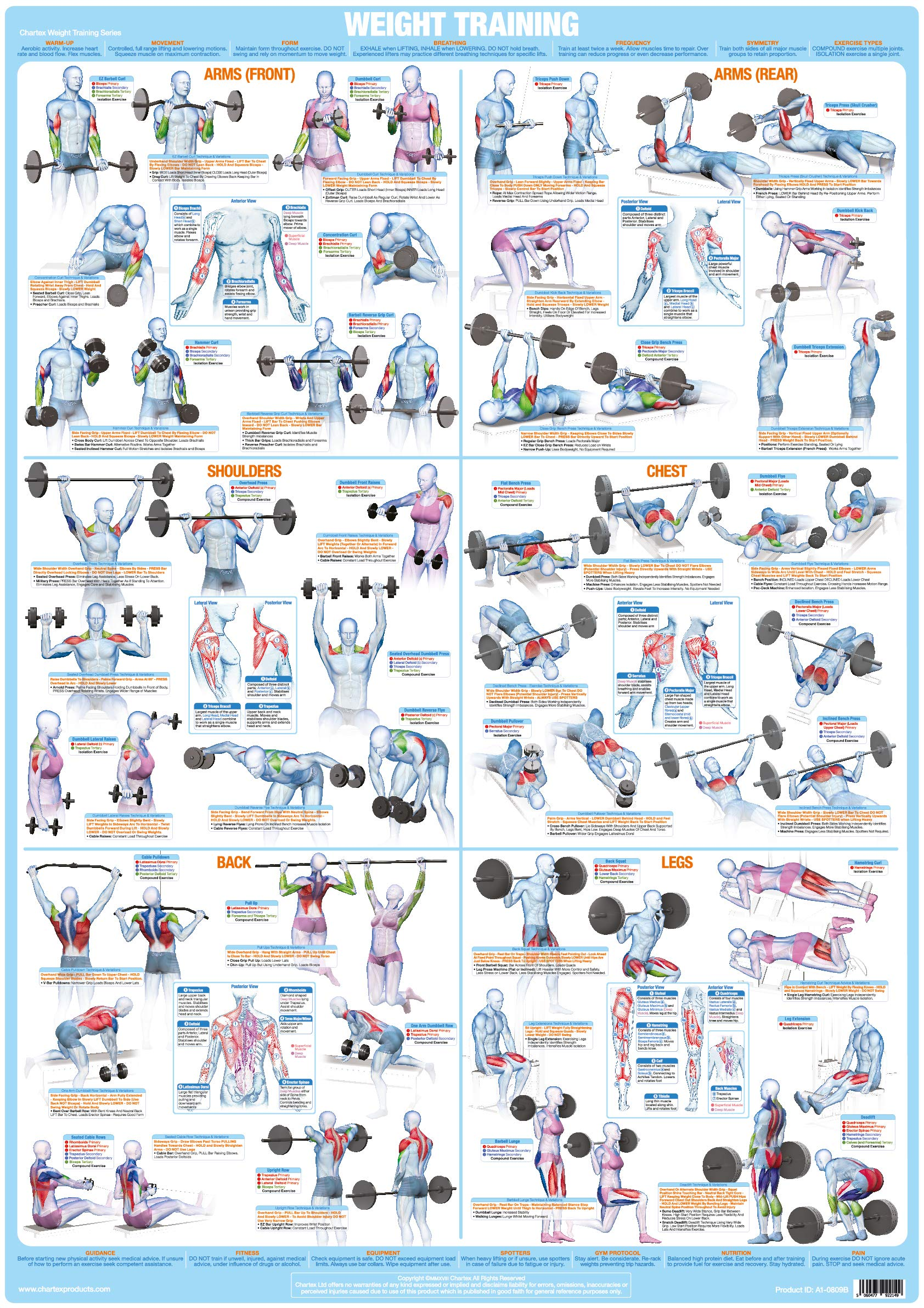 Body Building Keep Fit DUMBBELL WORKOUT POSTER 36X24/'/' GYM