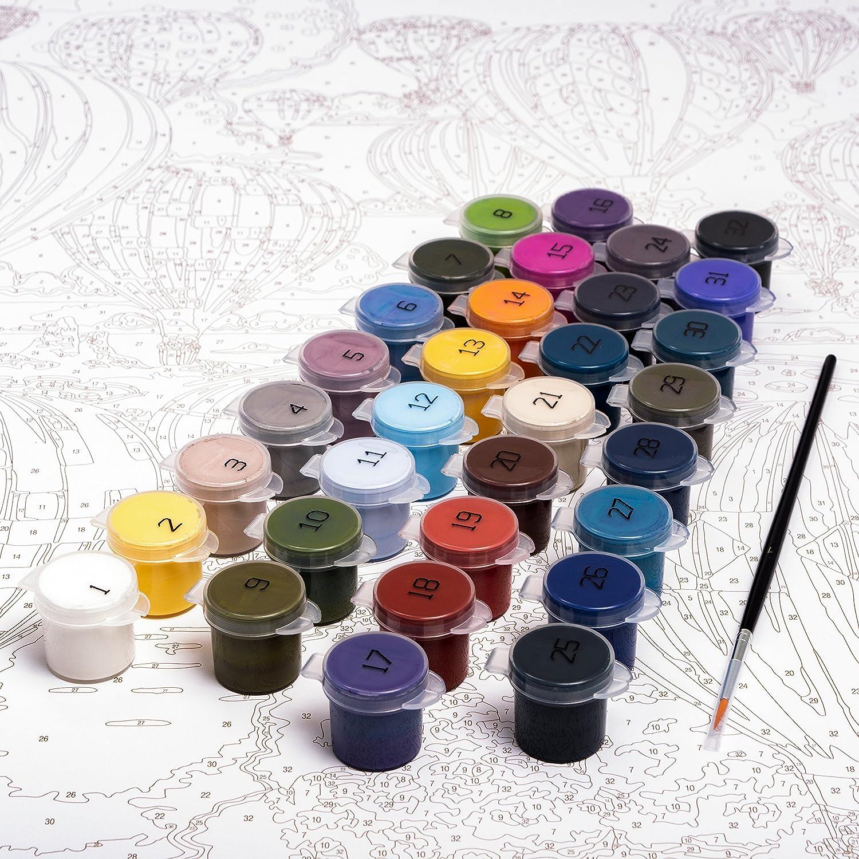 Amazon.com: Plaid Creates 17084 Paint by Number Kit 16