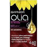 Garnier Olia 6.60 Intense Red Permanent Hair Dye