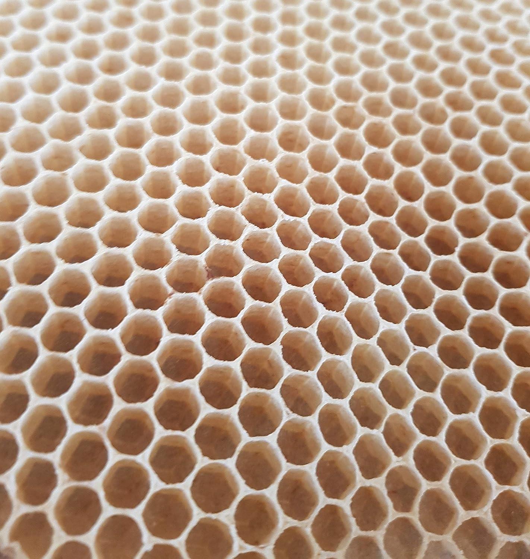 Stumpenkerze Tischkerze 7,7 x 14,8 cm 100/% Bienenwachs aus BIOLAND Imkerei Bienenwachskerze