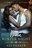 One Winter Night: A Sexy Bad Boy Holiday Novel (The Parker's 12 Days of Christmas Book 1) (English Edition)