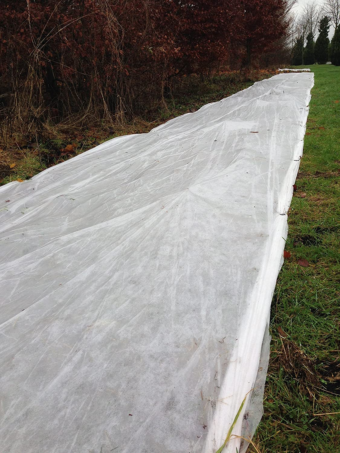 1m x 16m plant fleece winter frost protection garden horticultural Agricultural Apollo
