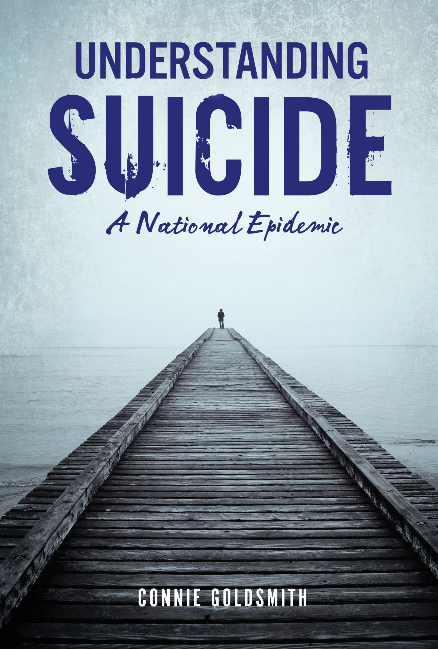 Understanding Suicide: A National Epidemic by Twenty-First Century Books (CT)